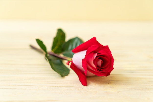 Красная роза на дереве