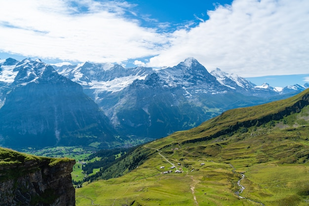 Деревня гриндельвальд с альпами в швейцарии