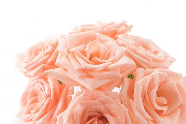 ピンクと白のバラ