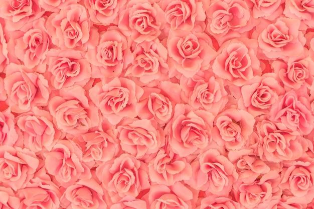 Розы фон