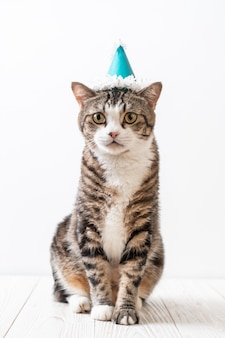 パーティーハットを持つ猫
