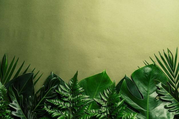 熱帯のヤシの葉の背景にコピースペース