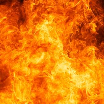 炎火の炎のテクスチャ背景