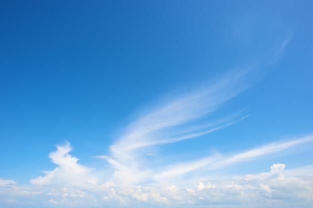明るい青い空の翼の形をした雲
