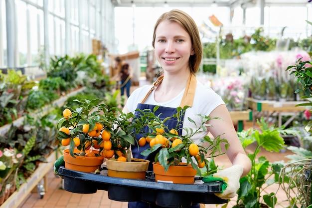 みかんの木を提供している赤毛の若い女性植物市場温室売り手
