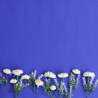 鮮やかなカラフルな花の背景