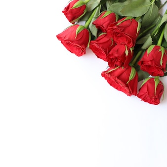 Красная роза многофункциональный фон для юбилея, свадьбы, дня рождения или других торжеств