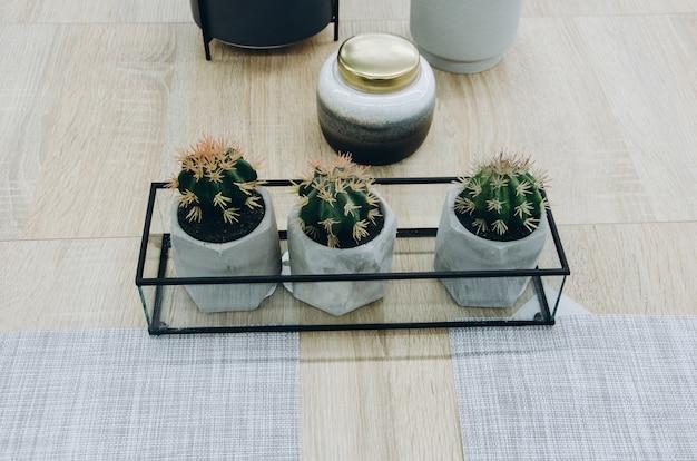 Домашний декор с кактусом