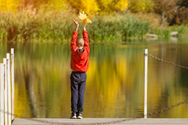 彼の手で葉を持つ桟橋に立っている赤いジャケットの少年