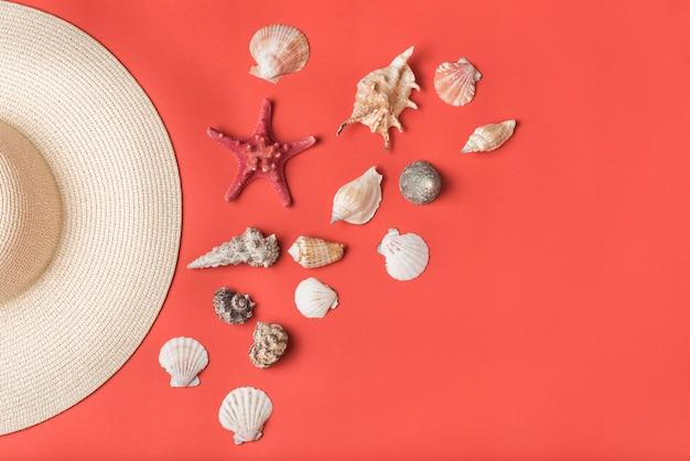 さまざまな貝殻と麦わら帽子の一部