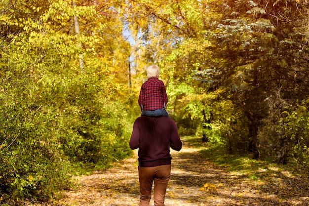 秋の森を歩く彼の肩に息子を持つ父。背面図