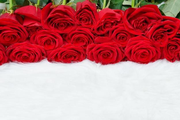 白い毛皮の赤いバラの大きな花束