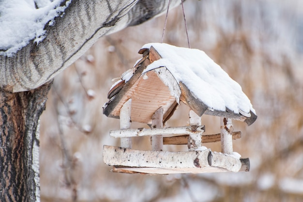 バーチ鳥の餌箱は雪で覆われています。冬の日
