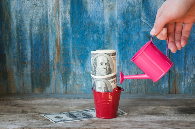 ドルに水をまく女性の手で少し水まき缶。古い木製の背景。事業コンセプト