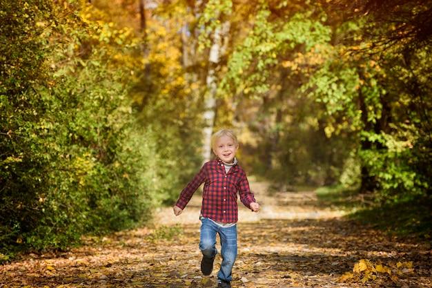 格子縞のシャツを着た金髪の少年は、秋の路地を駆け下ります。