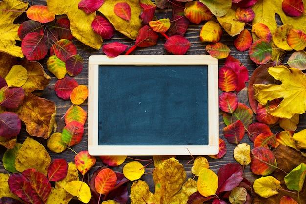 Разноцветные осенние листья на деревянной поверхности