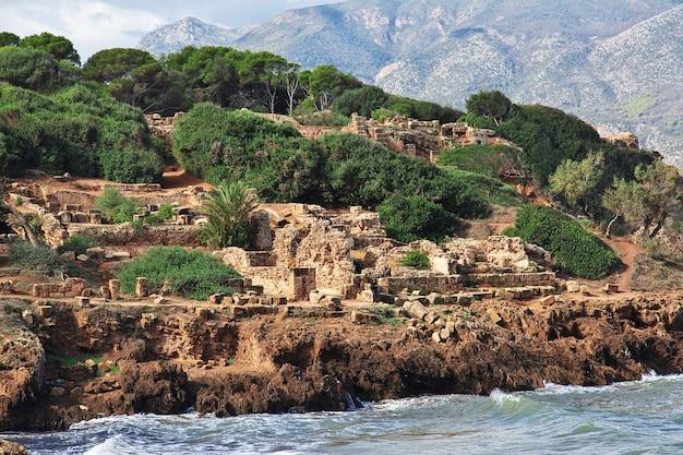 アフリカのアルジェリアの石と砂のティパザローマ遺跡