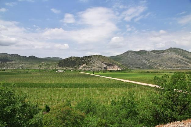 Зеленые горы боснии и герцеговины