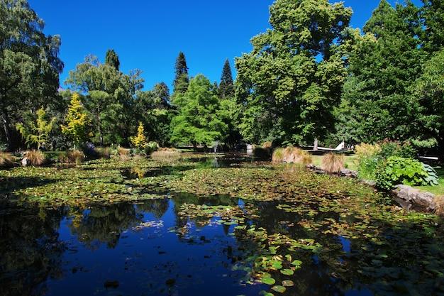 Ботанический сад в городе квинстаун, новая зеландия