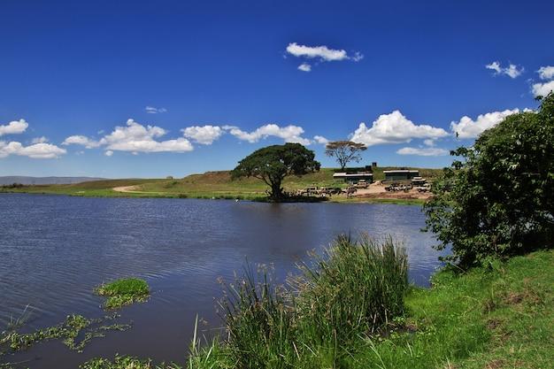 Озеро на сафари в кении и танзании, африке