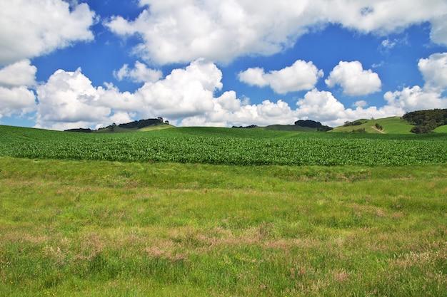 Холмы и поля новой зеландии