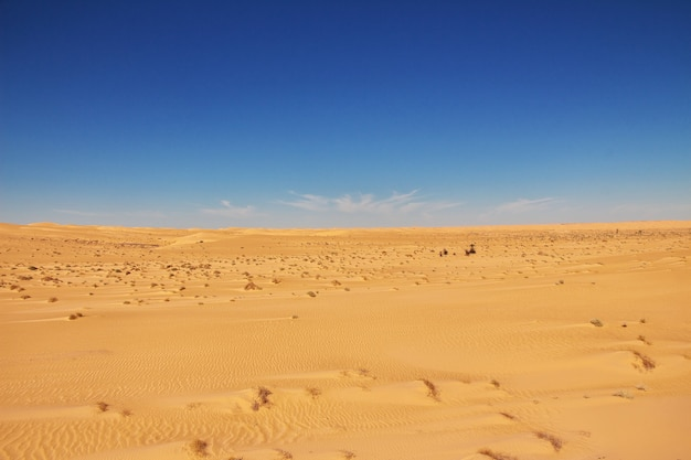 アフリカの中心にあるサハラ砂漠の砂丘