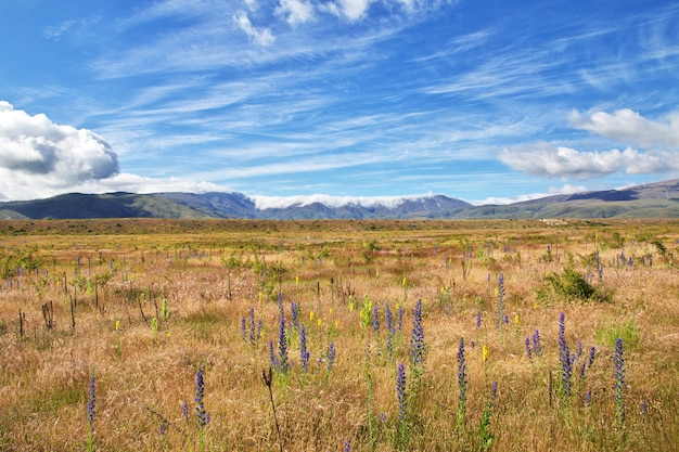 Горы южного острова, новая зеландия