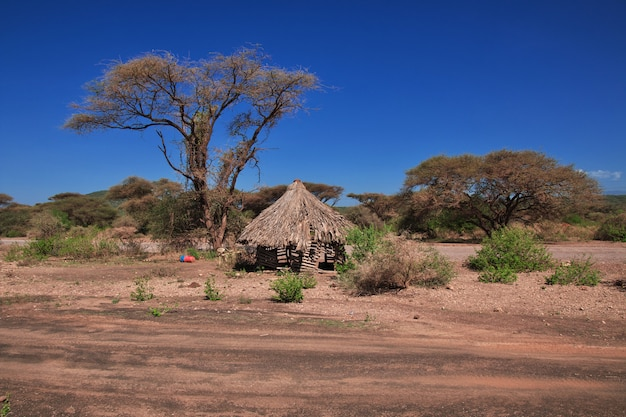Дом в деревне бушменов, африка