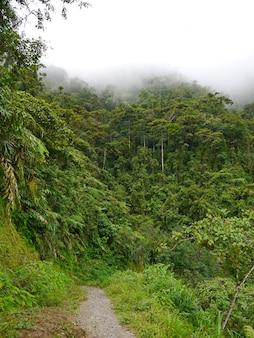 Дорога по горам в банауэ