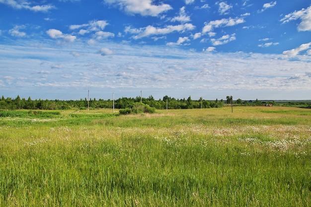 ベラルーシの国の畑と森