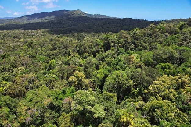 オーストラリア、キュランダの谷の眺め