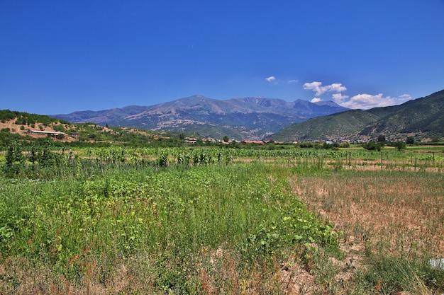 ブルガリアの山の景色