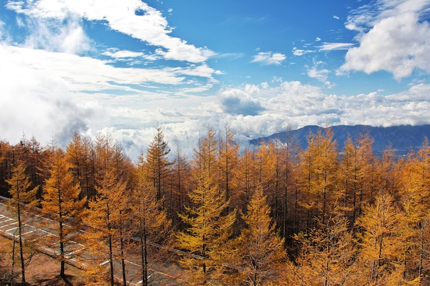 秋、日本の国立公園富士山の眺め