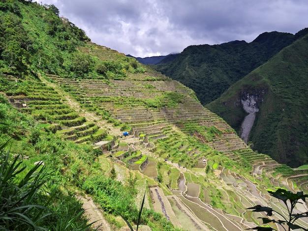 Рисовые террасы в банауэ, филиппины