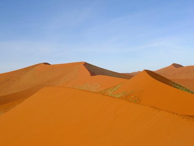 ナミビア、ソーサスフライ、ナミブ砂漠の砂丘