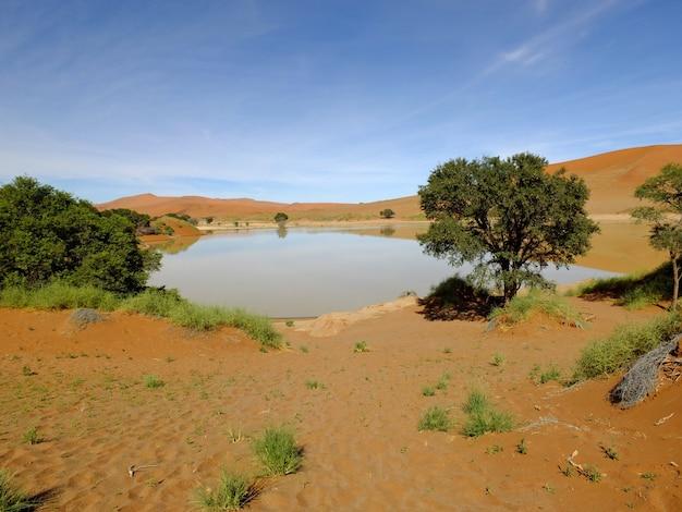 砂丘、ナミブ砂漠、ソーサスフライ、ナミビアの湖