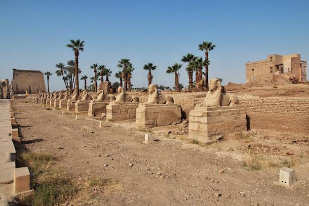 エジプトルクソール市の古代ルクソール神殿