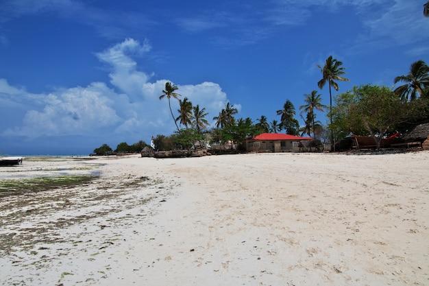 Отлив на занзибаре, индийский океан