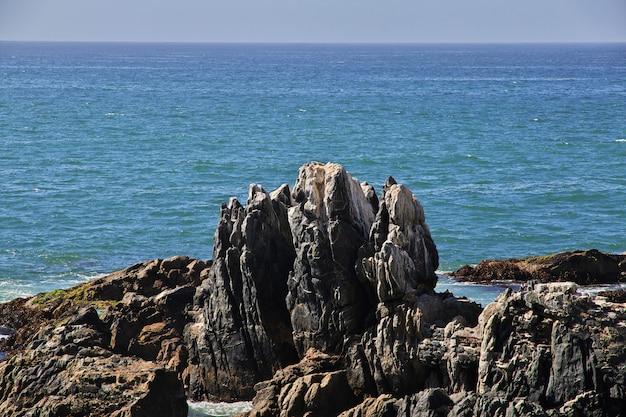 チリ、ビニャデルマルの海岸の岩