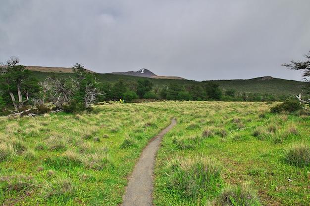 ロスグレーシャー国立公園のハイキング、フィッツロイ、エルチャルテン、パタゴニア、アルゼンチン