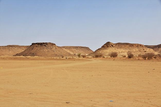 スーダンの砂漠サハラ