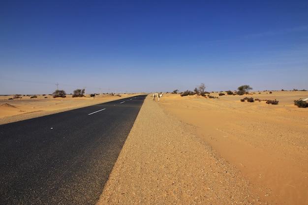 アフリカのスーダンのサハラ砂漠