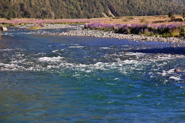 ニュージーランド南島の川