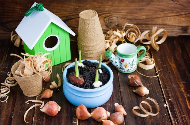 Торфяные горшки, банка с водой, скворечник и луковицы тюльпанов.