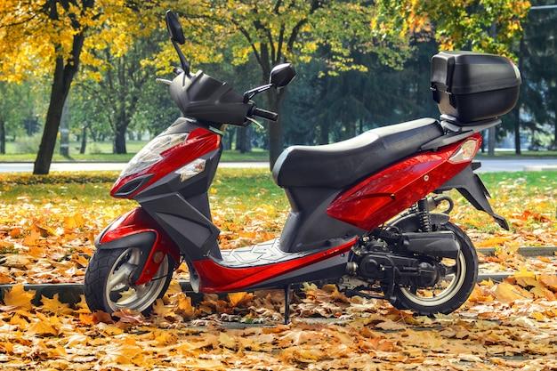 秋の公園でスクーター