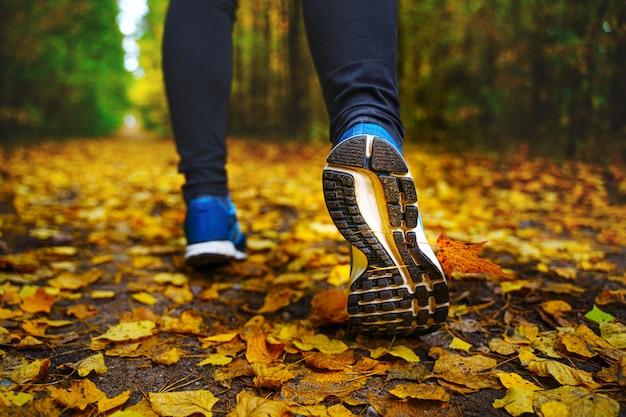 青いスニーカーのジョガーの足がクローズアップ。秋の森を走る女性アスリート。落ち葉が散らばる素晴らしい秋の森でジョギング