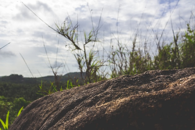 バックグラウンドで芝生と丘が付いている石を閉じます