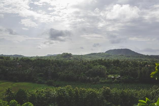 背景に丘がある緑の風景