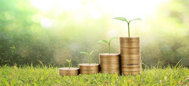 Выращивание растений на монетах. концепция финансирования инвестиций