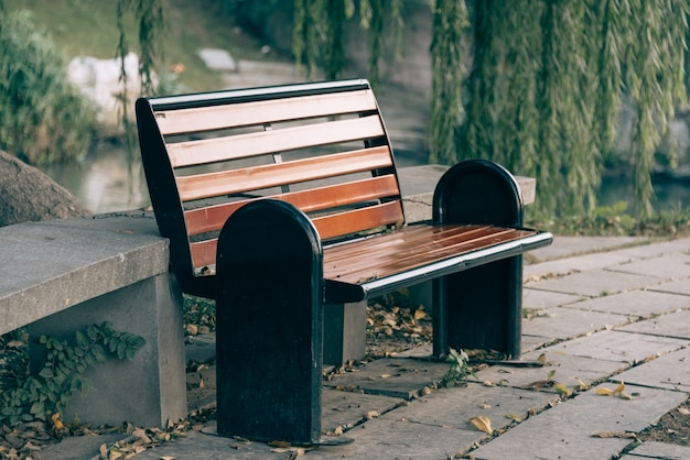 Скамья под деревьями в парке